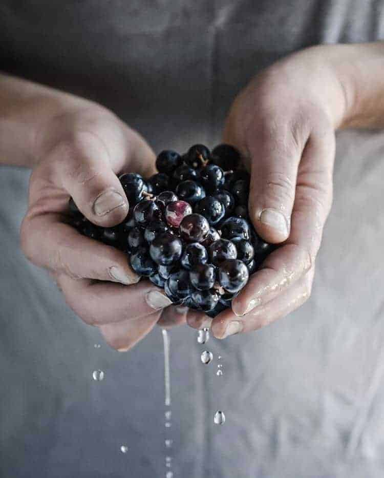 a set of hands holding dark grapes with water dripping off